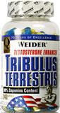 tribulus terrestris bodylab